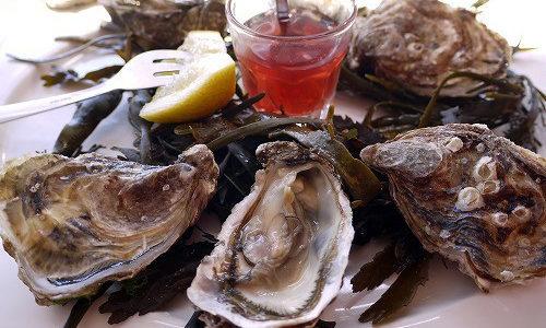 【フランス カンカル】牡蠣が美味しい!ブルターニュのおすすめの街